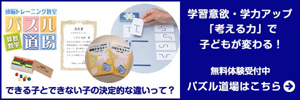 bn_top_puzzle_s
